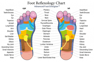 AFE-Foot-Reflexology-Chart